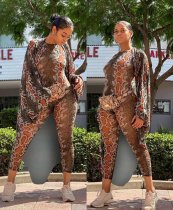 Snake Skin Print Long Cloak +Jumpsuits 2 Piece Sets Plus Size SC-705