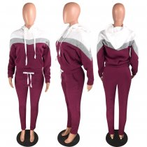 Casual Hoodies Tracksuit Two Piece Sets WZ-8239