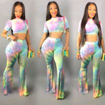 Sexy Printed Short Sleeve Crop Top Long Pants Two Piece Set WZ-8207