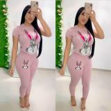Rabbit Print Short Sleeve Tracksuit Casual Two Piece Set PIN-8398