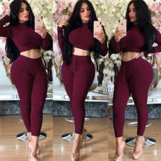 Solid Long Sleeve Crop Tops Pants Two Piece Outfits LDS-3171