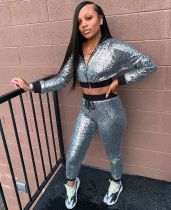 Casual Sequin Hooded Tracksuit Two Piece Sets WZ-8232