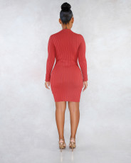 Solid Long Sleeves High Collar Slim Mini Dress LSL-6320
