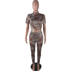 Leopard Print Short Sleeves Two Piece Outfits RSN-716