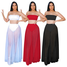 Sexy Mesh Two Piece Skirt Set YD-8178