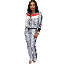 Casual Tracksuit Zipper Long Sleeve 2 Piece Sets SFY-063