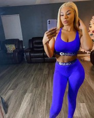 Sexy Tank Top And Pants Fitness 2 Piece Pants Set BGN-080