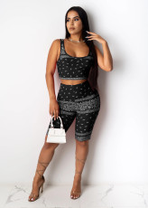 Plus Size Printed Tank Top Shorts 2 Piece Outfits FNN-8501