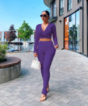 Plus Size Sexy Solid Color Crop Top And Stacked Pants Suits LQ-5849