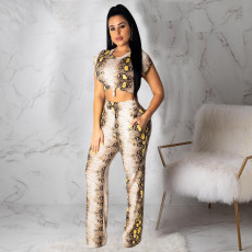 Fashion Sexy Snakeskin Print Pants Set ML-7358