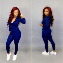 Solid Long Sleeve Front Zipper Jumpsuits LQ-5866