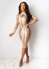 See-through Sexy Nightclub Sequin Dress CYA-8201-1