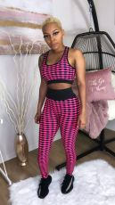 Sexy Printed Fitness Two Piece Pants Set SMD-5013