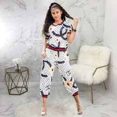 Casual Printed Long Sleeve Two Piece Pants Set SMR-9717