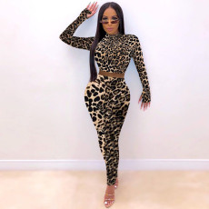 Sexy Leopard Print Long Sleeve Cropped Top And Pants Two Piece Sets DMF-8144