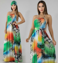 Sexy Printed Halter  Backless Maxi With Headscarf DMF-8085