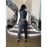 Plus Size Fashion Rib Splice Slim Long Sleeve Top And Pants Set ML-7373