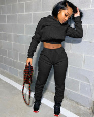 Casual Solid Hoodies Sweatpants Two Piece Sets LSD-9035