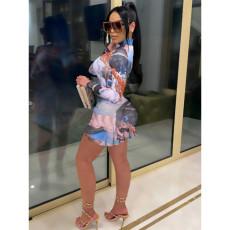 Plus Size Angel Print Ruched Long Sleeve Mini Dress YIY-5231