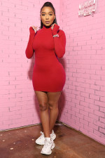 Solid Turtleneck Long Sleeve Bodycon Mini Dress SFY-204