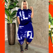 Plus Size 5XL Printed Short Sleeve Harem Pants Two Piece Set OMY-8055