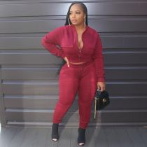Plus Size Casual Solid Long Sleeve Two Piece Sets LP-6268