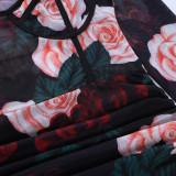 Sexy Mesh Rose Print Long Sleeve Club Dress FL-23558