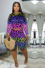 Plus Size Leopard Long Sleeve Two Piece Shorts Set YMF-8073
