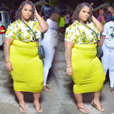 Plus Size Sexy Fashion Print Short Sleeve Long Skirt 2 Piece Set NNWF-7011