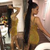 Sexy Spaghetti Strap Mini Bodycon Club Party Dress TE-4212