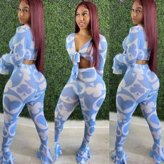 Sexy Printed Mesh Ruffled Two Piece Pants Set YD-8362