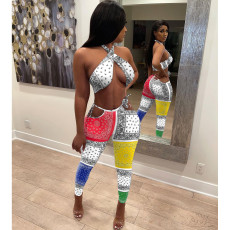 Summer Sexy Paisley Print  Two Piece Sets IV-8177