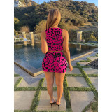 Sexy Leopard Sleeveless Lace Up 2 Piece Sets RSN-796