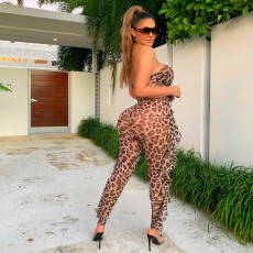 Sexy Leopard See Through Tube Jumpsuit ZSD-095