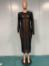 Plus Size Mesh See Though Long Sleeve Club Dress YIM-175