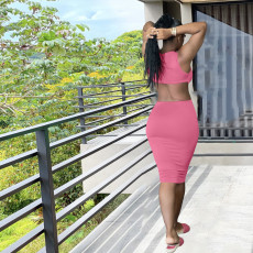 Plus Size Solid Sleeveless Backless Midi Dress DYF-1070