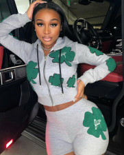 Casual Sports Hooded Zipper Long Sleeve 2 Piece Sets QY-5239