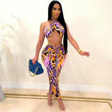 Sexy Printed Hater Long Skirt 2 Piece Sets SH-390152