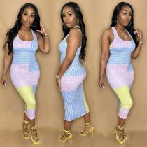 Stripe Print Sleeveless Slim Long Dress PIN-8604