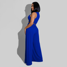Solid Sleeveless Crop Top Wide Leg Pants 2 Piece Sets SFY-2123