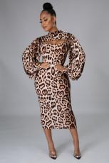 Leopard Long Sleeve Crop Top+Sling Midi Dress 2 Piece Sets PIN-8607