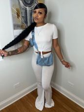 Casual Solid Short Sleeve Flared Pants 2 Piece Sets PIN-8608