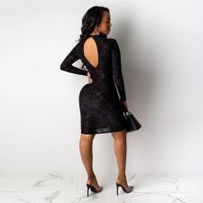 Sexy Mesh See Through Backless Slim Club Dress SH-390185