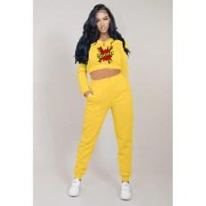 Letter Print Plush Sweatshirt And Sweatpants 2 Piece Suits YMT-6224