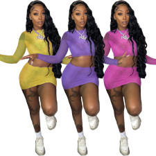 Mesh Perspective Long Sleeve And Mini Skirt Two Piece Sets LM-8273
