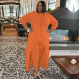 Plus Size Solid Irregular Long Top And Pants 2 Piece Sets MQXF-23583