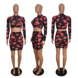 Sexy Mesh Print Long Sleeve Skirt 2 Piece Sets SHE-7116