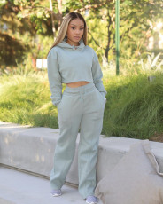 Solid Plush Hoodie Top And Pants Casual 2 Piece Suits FSL-F173