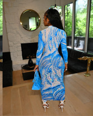 Sexy Printed Long Sleeve Zipper Maxi Dress SNIF-568047