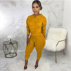 Casual Solid Hooded Long Sleeve 2 Piece Pants Set ABF-6695